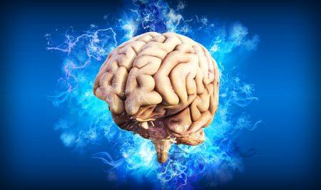Así funciona nuestro cerebro a la hora de aprender